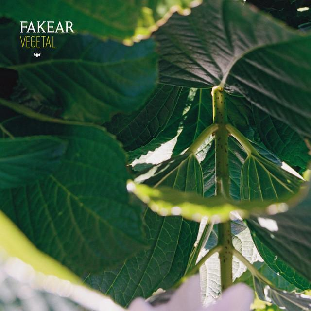 Fakear - All Of Us (on plusfm.net)