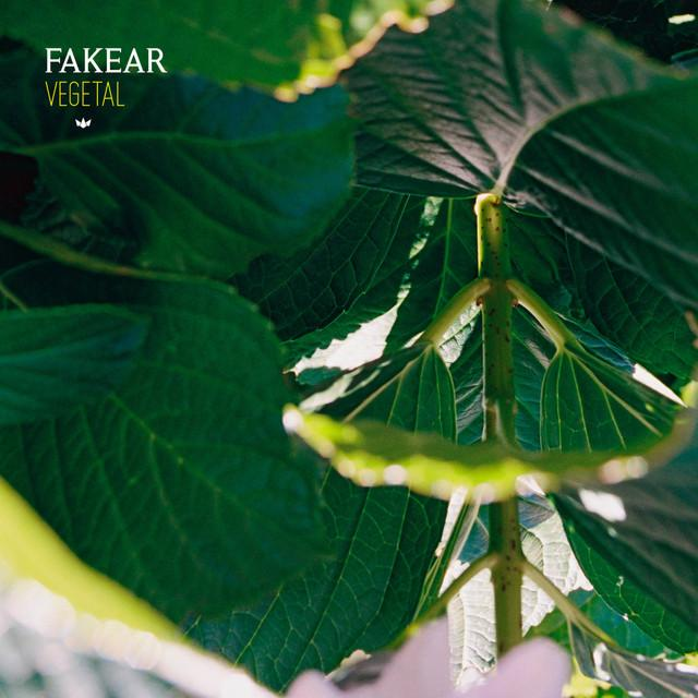 Fakear - Mantra (on plusfm.net)
