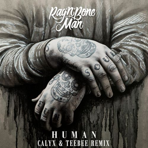 Rag'n'Bone Man - Human (Calyx & TeeBee Remix) (on plusfm.net)